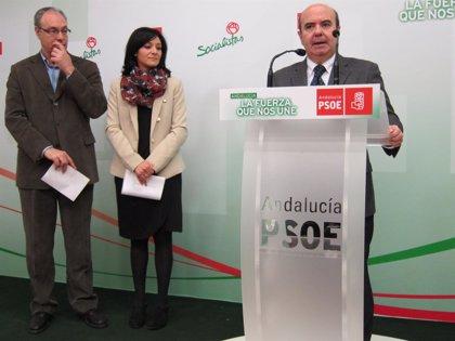 """Zarrías augura que el ciclo de victorias electorales del PP """"termina el 25 de mayo"""" en las europeas"""
