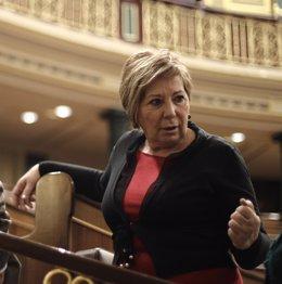 Celia Villalobos, en el hemiciclo