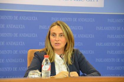 """PP-A pide el cese """"inmediato"""" de De Llera por sus """"inadmisibles"""" palabras apuntando a una """"dictadura encubierta"""" del PP"""