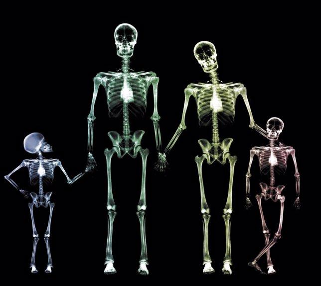 Esqueletos de una familia con huesos fuertes