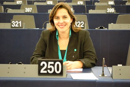 El BNG pide a la Comisión que aclare las gestiones realizadas por el España en relación al dique flotante de Ferrol