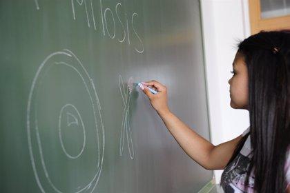 Las clases de repaso del Plan EXIT se impartirán durante cinco horas semanales en grupos de 10 alumnos