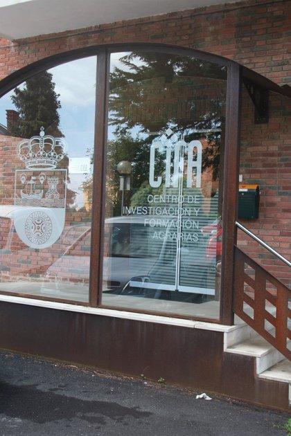 CANTABRIA.-El CIFA acoge este martes una conferencia sobre el cultivo de la vid en Cantabria