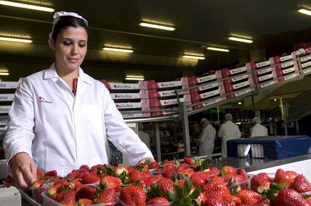 Trabajadora de Grufesa en Huelva