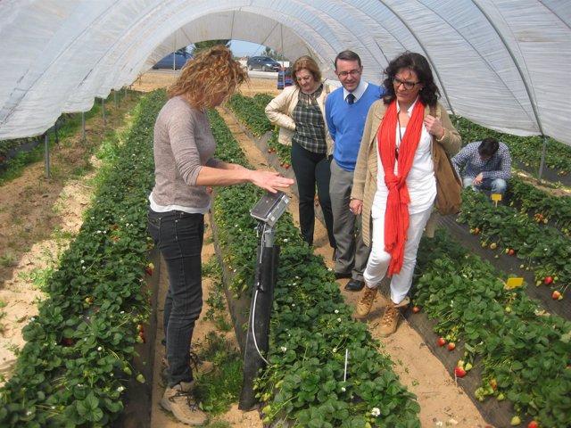 La delegada territorial de Agricultura, Josefa Glez Bayo, visita Adesva.