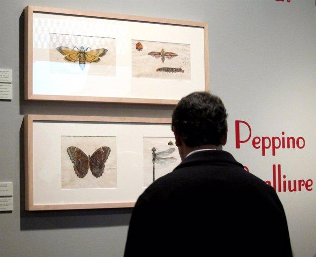Un espectador en la muestra dedicada a Peppino Benlliure