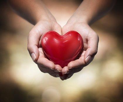 Corazón: la simple máquina de la vida