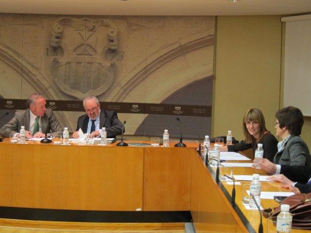 Nieto durante la Comisión