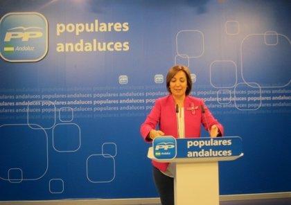 PP-A pide mantener conciertos sanitarios, paralizar fusiones hospitalarias y un mapa de infraestructuras