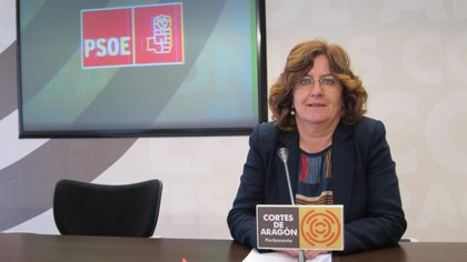 Broto (PSOE) advierte de la falta de presupuesto para el IAI en 2014