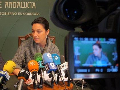 """Isabel Ambrosio da """"un sí rotundo"""" a formar parte del equipo del PSOE que concurra a las municipales de 2015"""