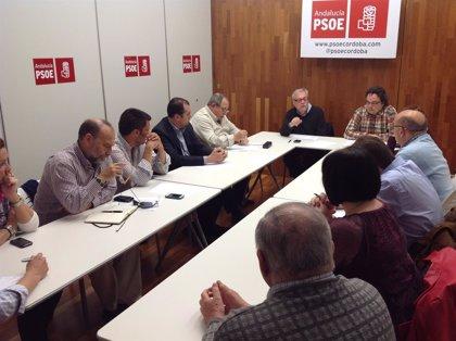 El PSOE de Córdoba constituye el grupo de trabajo sobre el modelo de ciudad de cara a las municipales de 2015