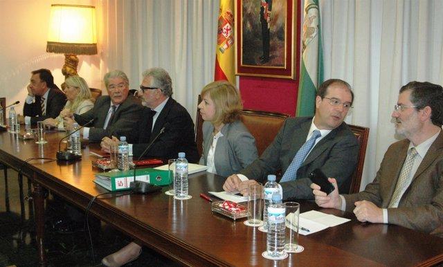 Pleno de la Cámara de Comercio de Córdoba