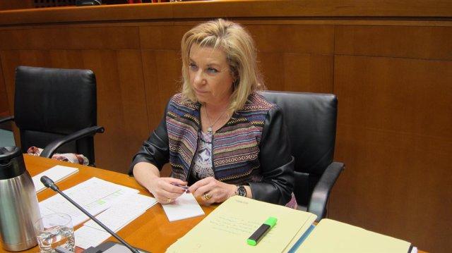 La consejera Dolores Serrat en su comparecencia en las Cortes