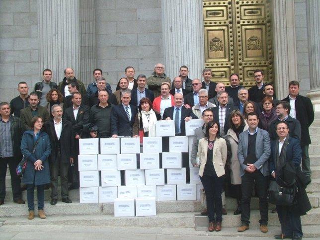 Acto de presentación en el Congreso del recurso a la reforma local