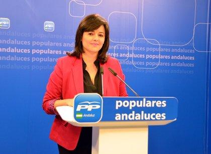 """PP-A critica que no haya variado """"la foto fija de la corrupción"""" y dice que """"existen indicios"""" para un posible adelanto"""