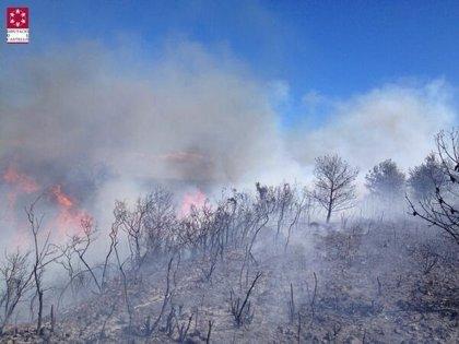 Bomberos trabajan en la extinción de un incendio de vegetación en Cervera del Maestre