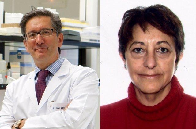 Premios de Investigación Biomédica 2014
