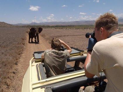 'Drones' para combatir la caza furtiva de elefantes y rinocerontes