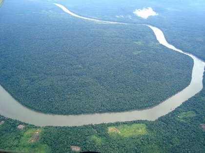 """El Amazonas, en """"alerta roja"""" por riesgo de inundación"""