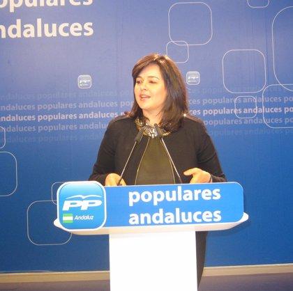 """PP-A exige explicaciones a Maldonado por el """"agujero"""" de 40 millones en avales de IDEA"""
