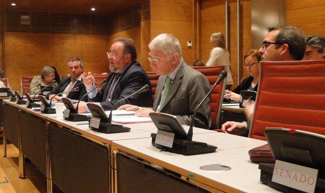 Aprobación de informe de nuevas adicciones en la Comisión Mixta Congreso-Senado
