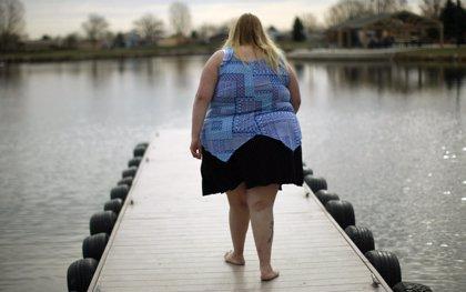 Investigadores españoles buscan la dieta proteica ideal para perder peso