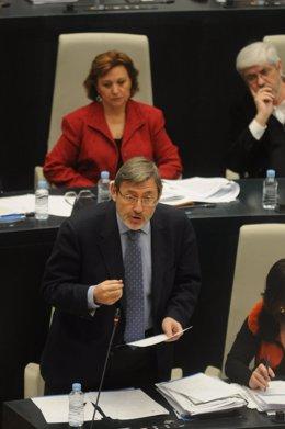 Lissavetzky en el Pleno