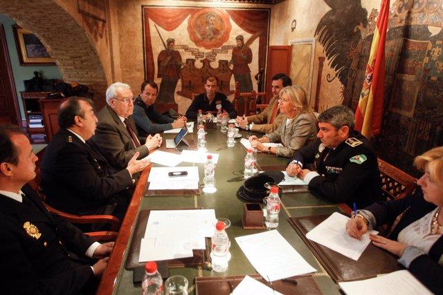 Junta Local de SEguridad de Marbella hernández mollar y angeles muñoz