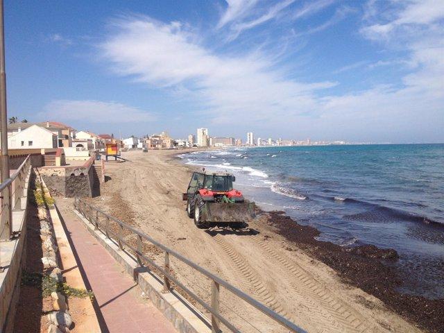 Limpieza de una playa de Cartagena