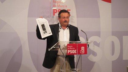 """PSOE afirma que la solución que da el Ministerio de Agricultura para resolver el problema de los purines """"es un parche"""""""