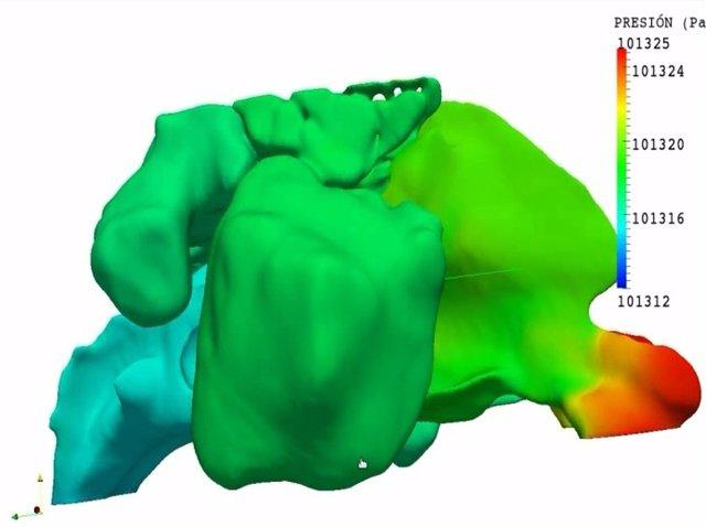 Imágenes en 3D de la cavidad nasal