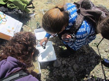 Buscan voluntarios ambientales para evaluar y estudiar el río Grande