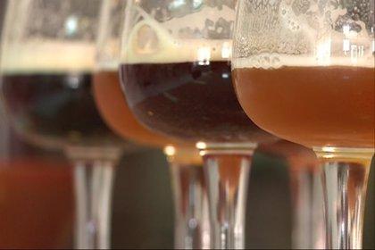 La elaboración de cerveza artesanal se populariza en Extremadura