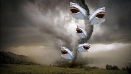 'Sharknado 2' necesita tu ayuda para financiar una escena de la película