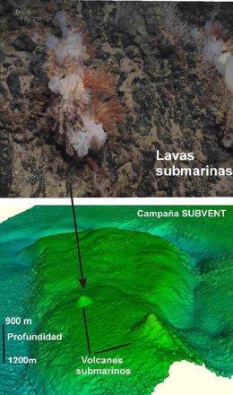 Imágenes submarinas captadas en la campaña SUBVENT del IGME