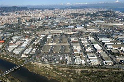 Mercabarna lanza una campaña para fomentar el consumo de cordero entre los catalanes