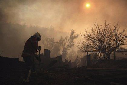 """Chile.- """"Tenemos un avance en la contención del incendio pero no podemos declararlo controlado"""", según la CONAF"""