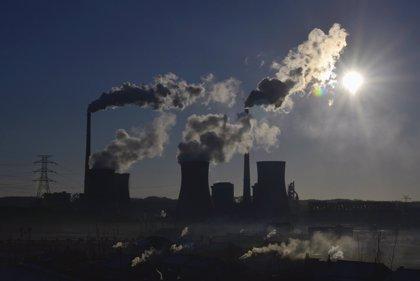 La actividad humana incrementa los niveles de mercurio en el aire y los animales