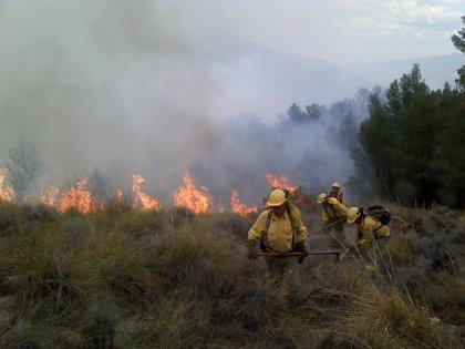 El viento y la difícil orografía dificultan la extinción de un incendio en Lucainena