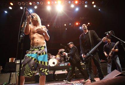 Nirvana podrían componer nuevas canciones