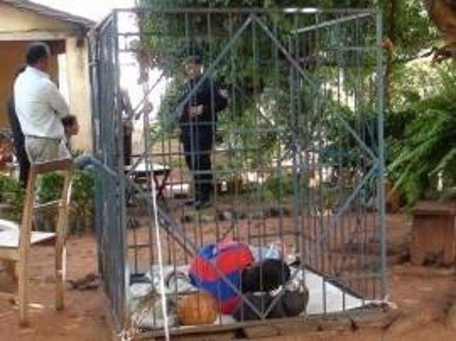Joven con discapacidad era encerrado en una jaula en Paraguay