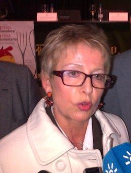 Elena Víboras