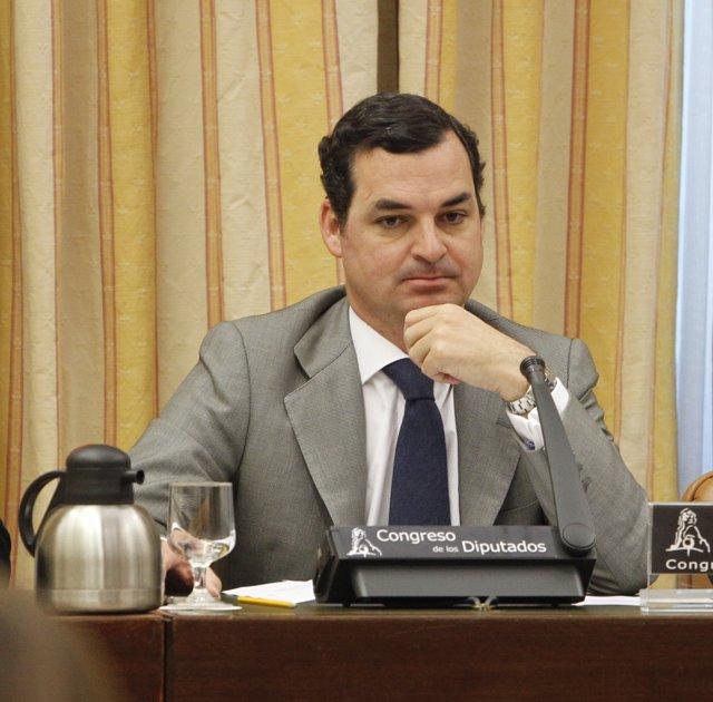 Leopoldo González Echenique, presidente de RTVE