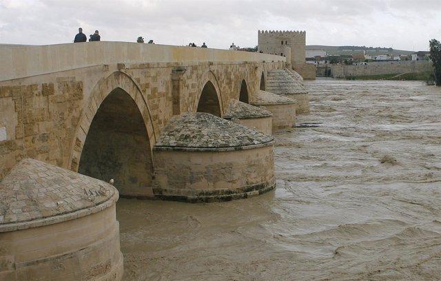 Aspecto que presenta el Guadalquivir a su paso por el Puente Romano de Córdoba
