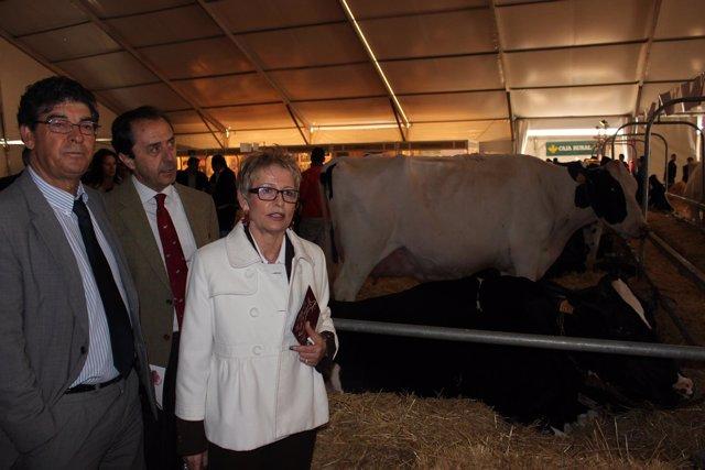 Valderas y Víboras visitan la feria con el presidente de Covap (centro)