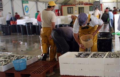 Más de 13.000 profesionales del mar renovarán los órganos rectores de las cofradías el 28 de junio