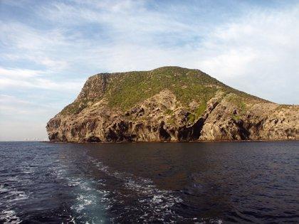 Medio Ambiente inicia la vigilancia de Isla Grosa durante los fines de semana