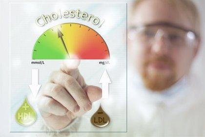 Colesterol: el bueno, el malo y... tus arterias