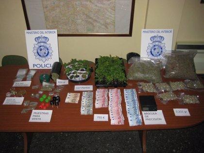 Dos detenidos por vender marihuana en un 'grow shop'